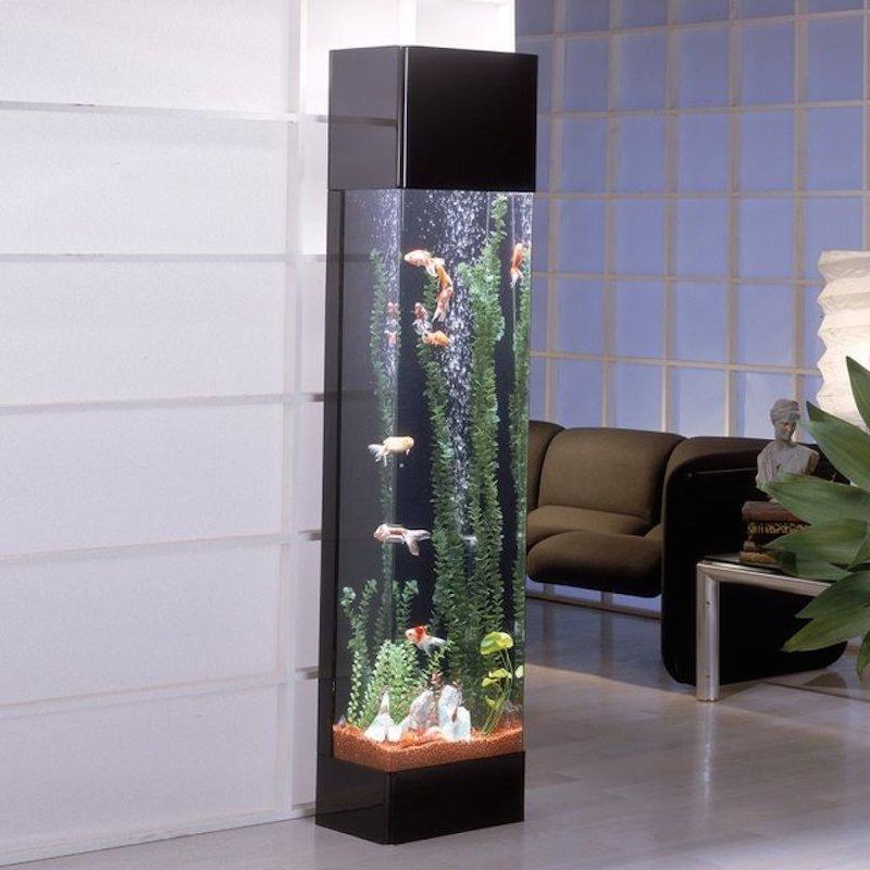 Tall Fish Tanks : Tall+Corner+Fish+Tanks Fish Tank